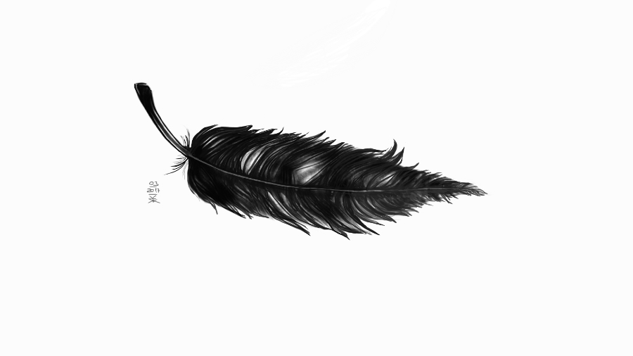 Feather © KirstenKKester.com | Kirsten K. Kester