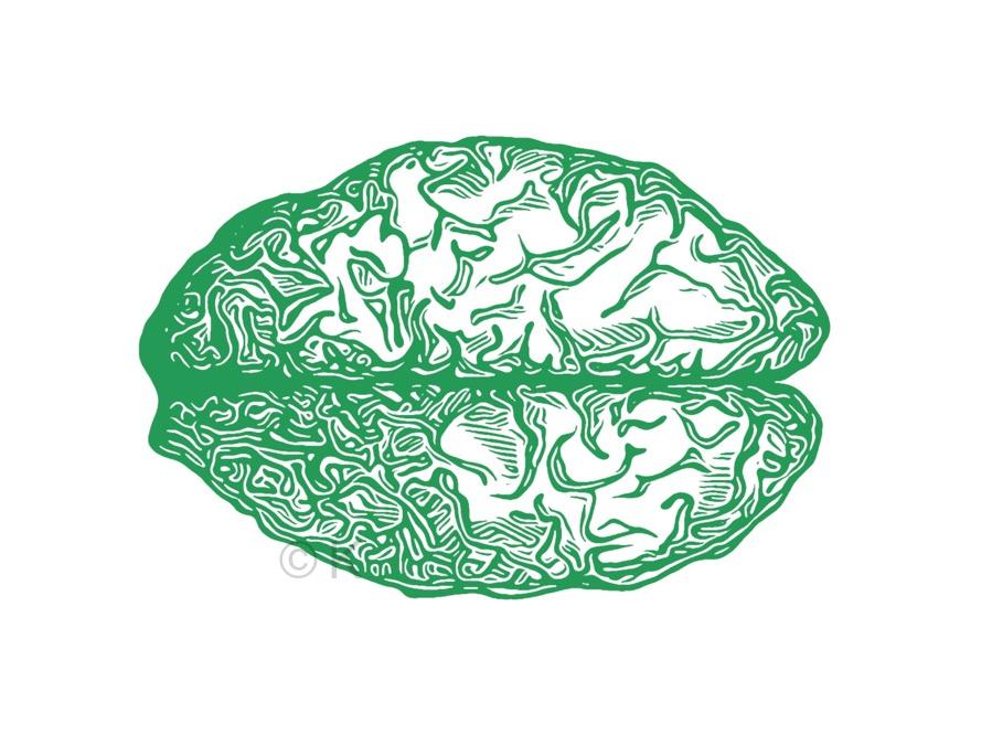 Grøn hjerne - Atelier K3 © KirstenKKester.com | Kirsten K. Kester