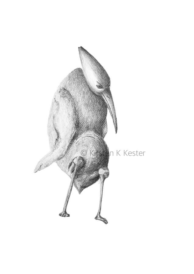 MUK — temmelig tynget © KirstenKKester.com | Kirsten K. Kesteri
