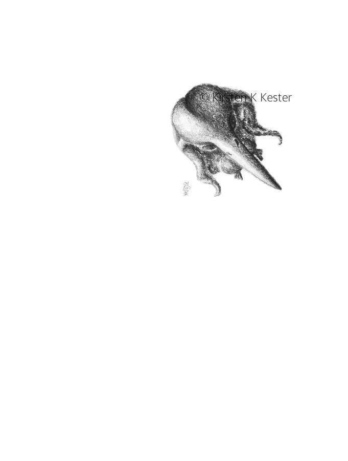 MUK — tydeligt tyndslidt © KirstenKKester.com | Kirsten K. Kesteri